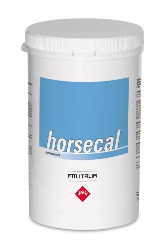 Horsecal